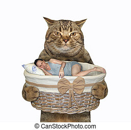 Cat holds basket with sleeping man