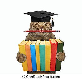 Cat holds stack of books 4