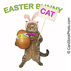 Cat holds the easter egg with a chick 2
