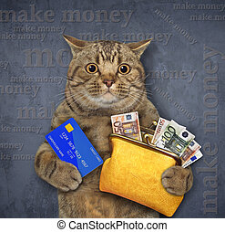 Cat holds wallet with euro 3