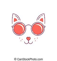 cat im sunglasses