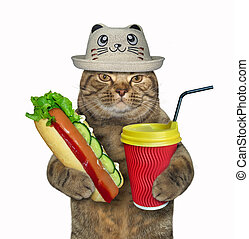 Cat in a funny hat with a hot dog 2