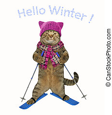 Cat in a hat is skiing 2