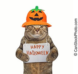 Cat in a pumpkin hat with a sign 2
