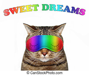 Cat in a sleep mask with text