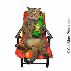 Cat in armchair with beer