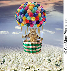Cat in balloon over roses