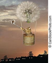 Cat in basket of dandelion balloon 2