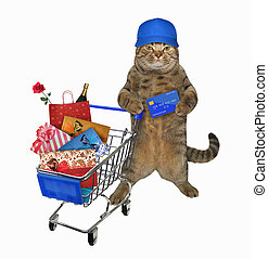 Cat in cap pushes shopping cart