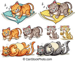 Cat in different actions illustration