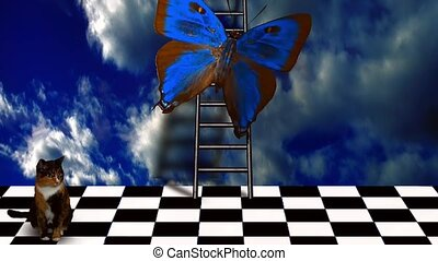Cat in empty imaginary room with giant butterfly and ladder