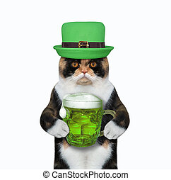 Cat in green cap drinks beer
