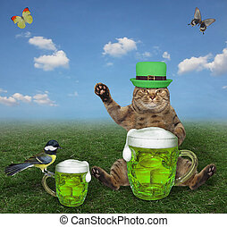 Cat in green hat drinks beer 2
