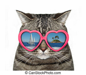 Cat in heart-shaped glasses 2