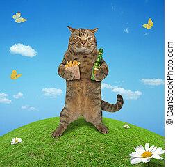 Cat in meadow 1