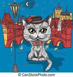 Cat in Prague, Prague Castle and Charles Bridge - Vector...