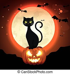 cat in pumpkin of halloween in the dark night