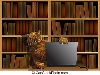 Cat in the library