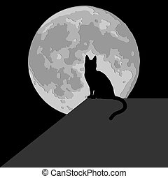 Cat in the moonlight