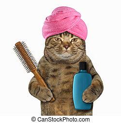 Cat in turban 1