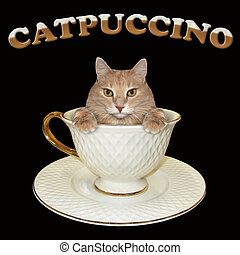 Cat inside coffee cup 2