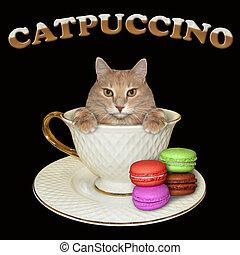 Cat inside coffee cup 3