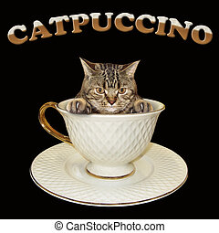 Cat inside coffee cup
