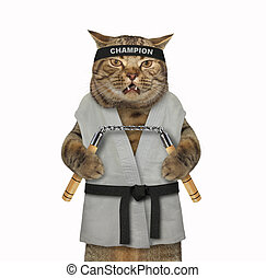 Cat karate fighter with nunchuck 3