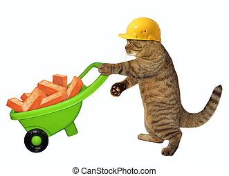 Cat laborer with wheelbarrow of bricks