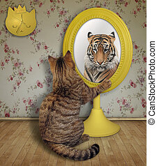Cat looks at its reflection at home 2