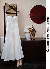 cat looks on elegant white wedding dress on a hanger. morning of the wedding day