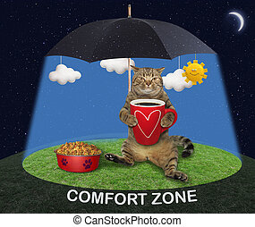 Cat lying under umbrella
