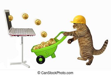 Cat miner with wheelbarrow of bitcoins