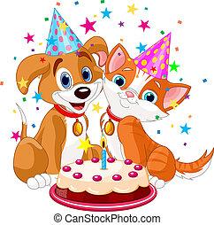 cat n dog birth