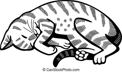 Cat Nap A Vector Illustration Of A Brown Tabby Cat