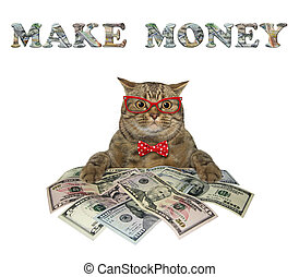 Cat near big pile of dollars 2