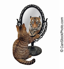 A beige cat stares his reflection in a mirror. He sees a tiger there. White background. Isolated.