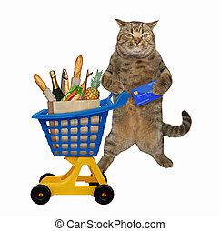 Cat near plastic trolley of food