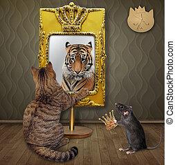 Cat near square yellow mirror 2