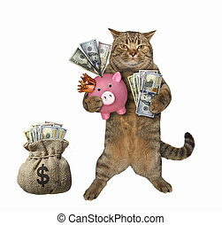 Cat near the sack of dollars
