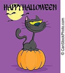 Cat On Pumpkin In The Night