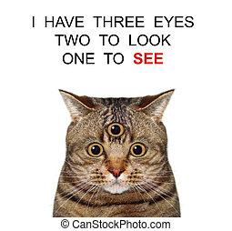Cat opens its third eye 2