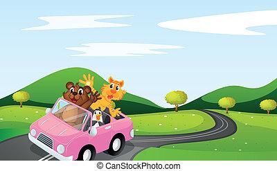cat, ottar and penguin - illustration of cat, ottar and...