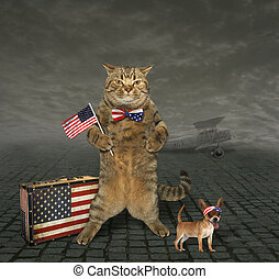 Cat patriot 4