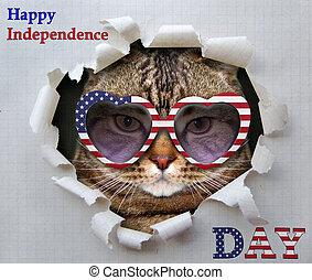 Cat patriot in American sunglasses