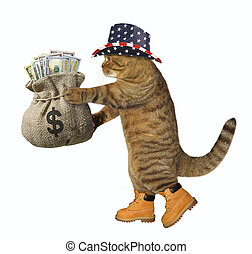 Cat patriot with a sack of money