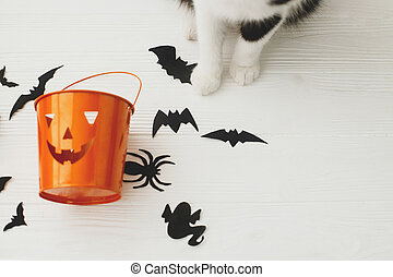 Cat paws and Jack o lantern candy pail on white background with bats and spider decorations, celebrating halloween at home. Trick or treat! Space for text