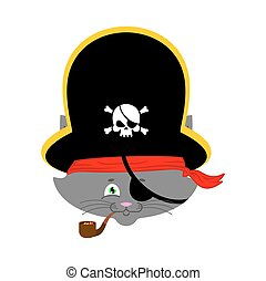 Cat pirate. Home pet buccaneer. filibuster hat and smoking pipe. Vector illustration.