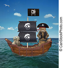 Cat pirate on the ship 2