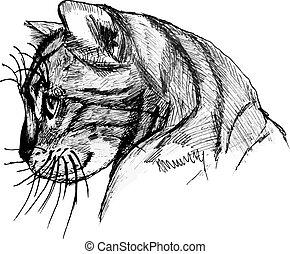 Cat portrait. Hand drawn illustration